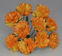GOLDEN APRICOT ASTER Daisy (1.3 cm) Mulberry Paper Flowers